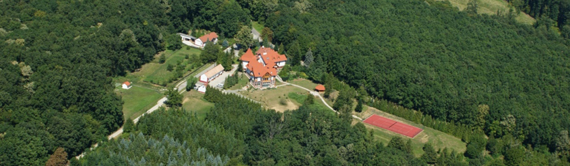 Kardosfa